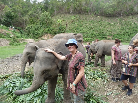 me and  elephants