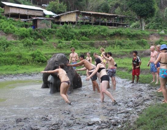 mud 2 - use